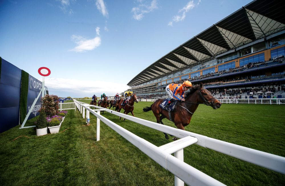 Horses pass the finishing post at Ascot Racecourse
