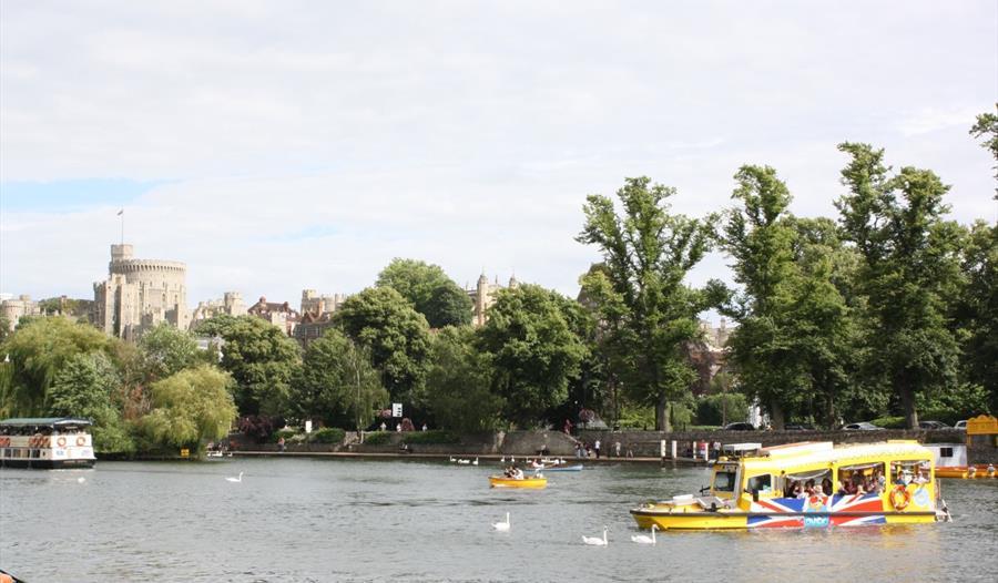 Windsor Duck Tours - Visit Windsor