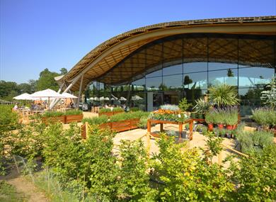 Windsor Great Park Image Copyright Edward Staines Visitors Centre At The Savill Garden Berkshire