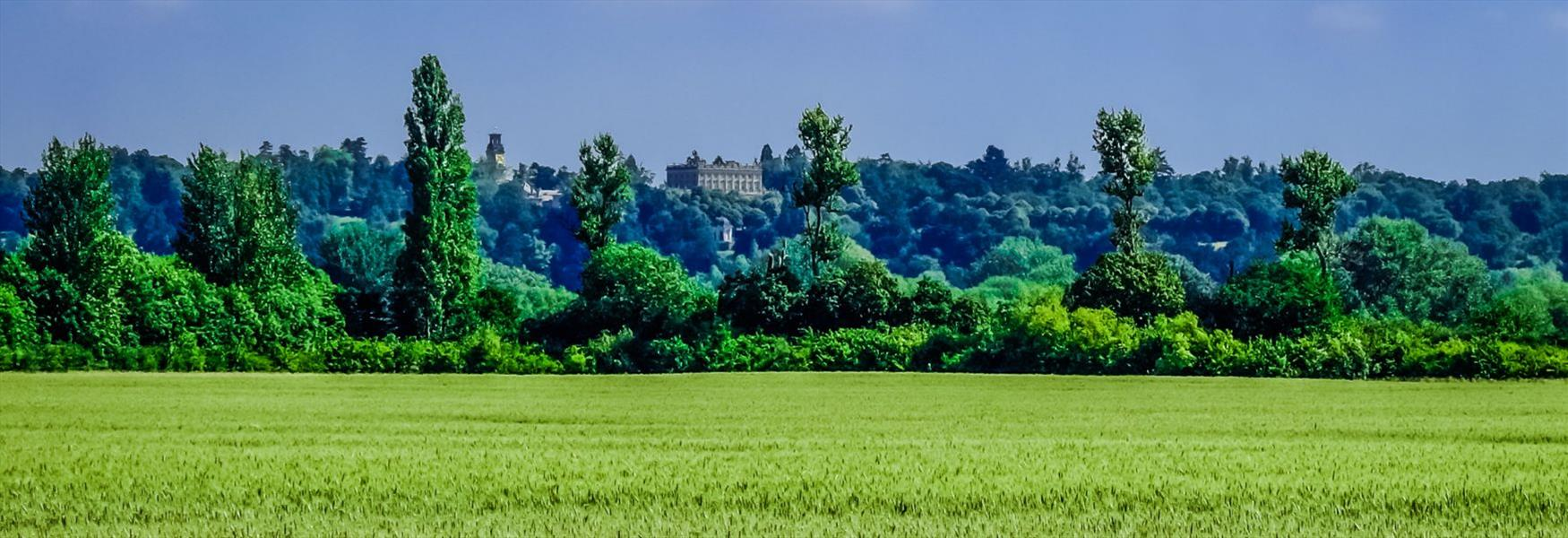 Views of Cliveden from Maidenhead