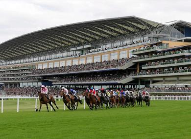 Grandstand, photograph courtesy of Action Images
