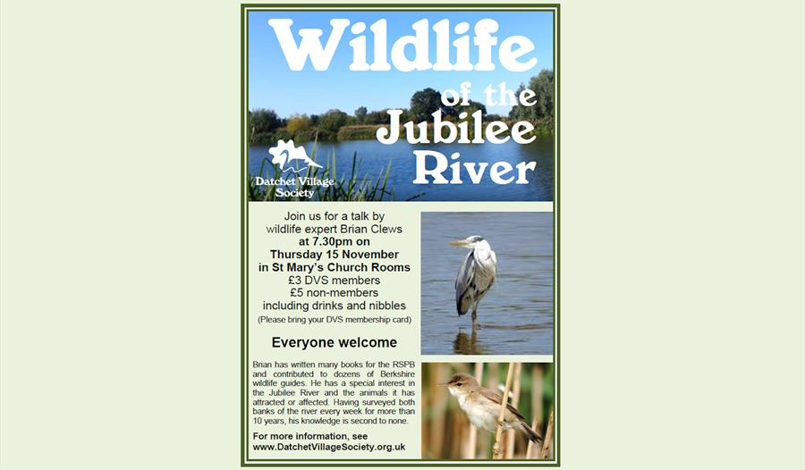 Wildlife of the Jubilee River