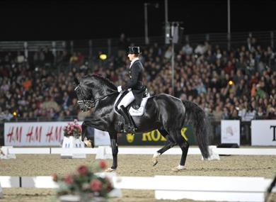 Dressage at Royal Windsor Horse Show
