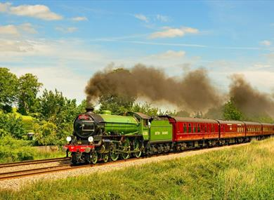 The Royal Windsor Steam Express