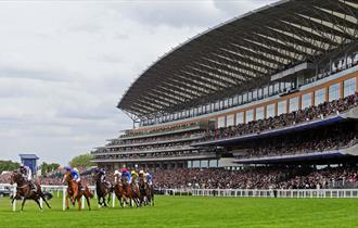 Racing at Ascot 2018: Sagaro Stakes Raceday