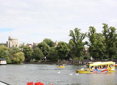 Windsor Duck Tours