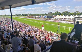 View from the Royal Windsor Racecourse grandstand