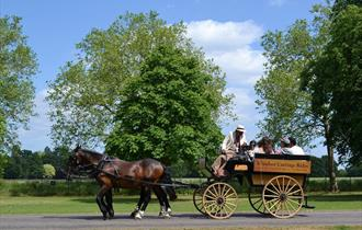 Windsor Carriages on the Long Walk, Windsor